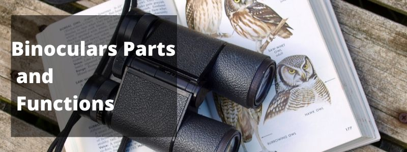 binoculars parts and functions